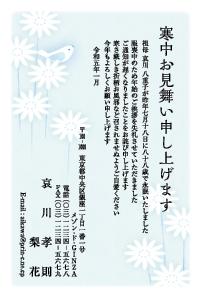 寒中見舞い特選 [椿]