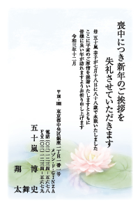 寒中特選 [菊]