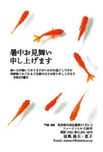 暑中見舞いはがき 金魚